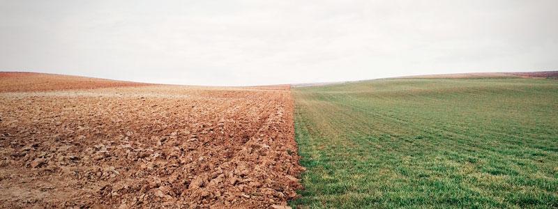 A o internacional de los suelos panorama actual de este for Recurso clausula suelo
