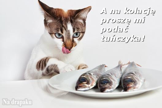 Tuńczyk na kolację!