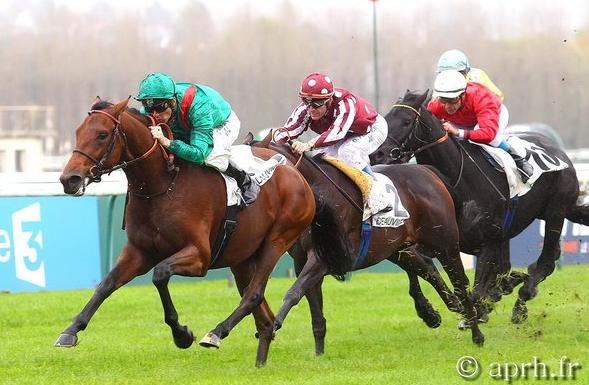 horse racing ediz inglese francese e tedesca