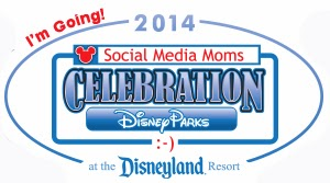 Disney Social Media Moms conference 2014 at the Disneyland Resort