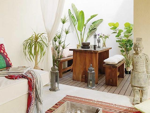 Plantas para exterior y mobiliario de madera