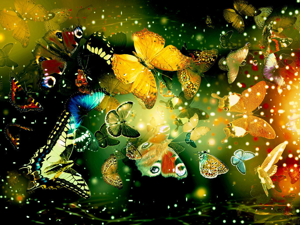 butterfly-wallpaper-19.jpg: awsum-wallpapers.blogspot.com/2012/12/butterfly-wallpapers.html