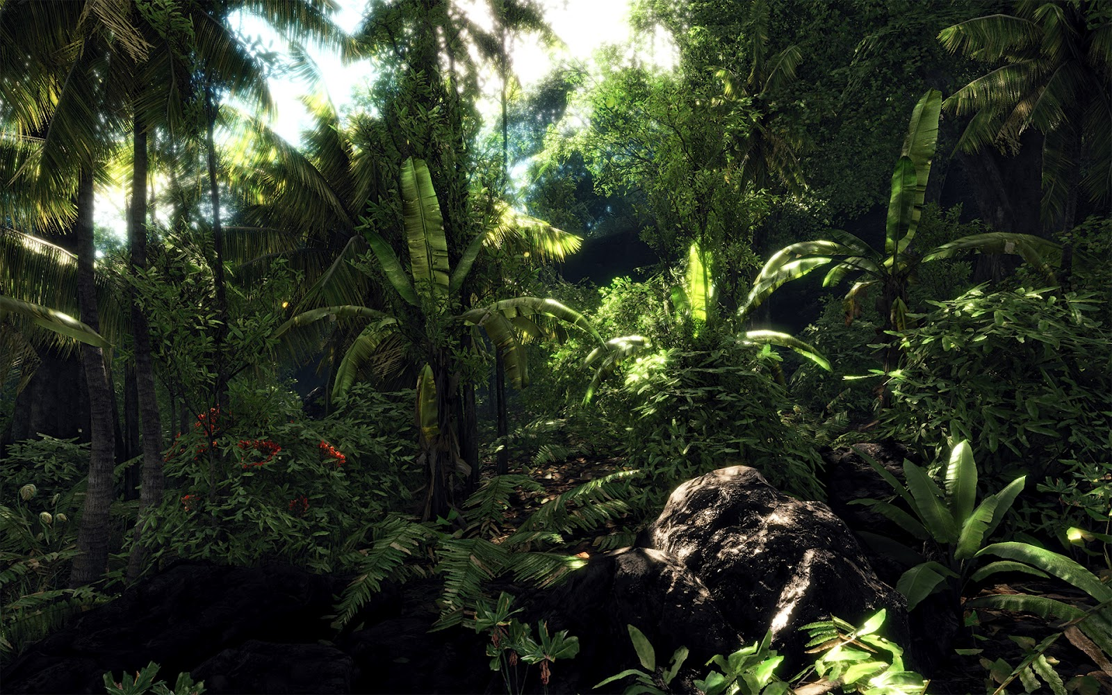 http://1.bp.blogspot.com/-gohjvAfgVr8/UAUZX3vI7sI/AAAAAAAABN0/VLQm4mon2p0/s1600/crysis+jungle+sceneary+landscape+map+wallpaper+background+crytek+frankfurt+fps+first+person+shooter.jpg