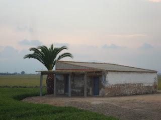 Old house - Rice Field - Sant Carles La Rápita