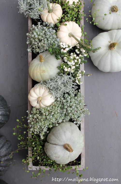 molly baby boo my favorite pumpkin. Black Bedroom Furniture Sets. Home Design Ideas