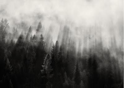 ambient light, jenis cahaya dalam fotografi, ray of light