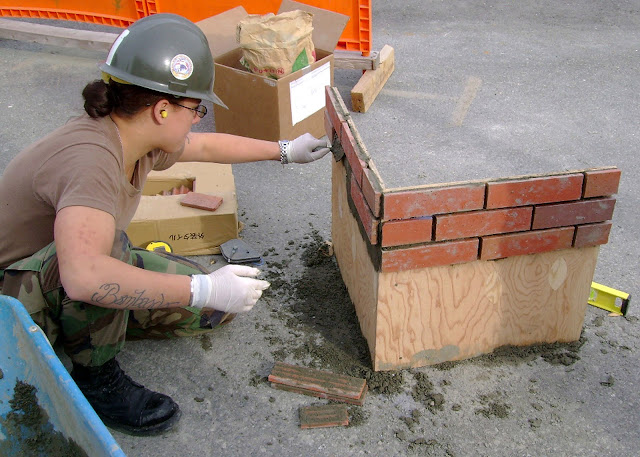 Brick Vineer4