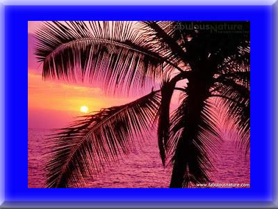 gambar_pemadangan_sunset_08