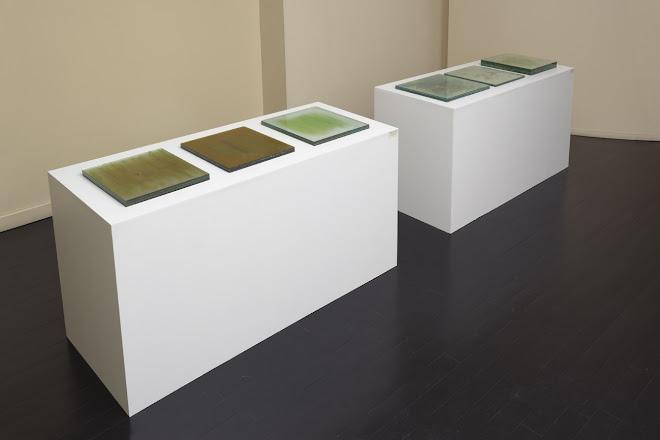 el aire entero, Galería Rubbers, 2010.
