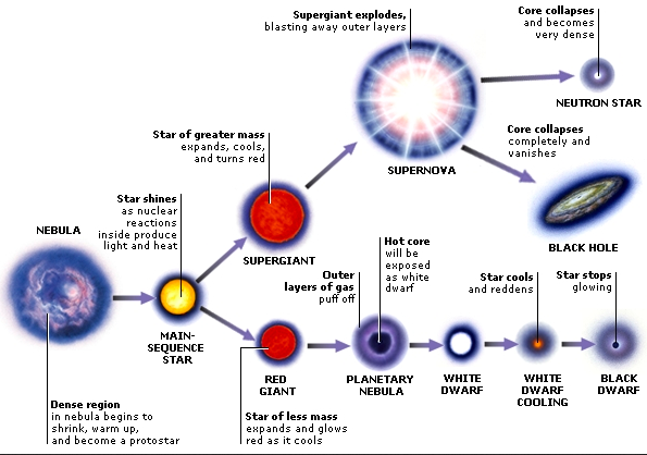 understanding the life cycle of a star How were the spitzer telescope pictures important to understanding stars  spitzer is the  how does the life cycle of a star compare to that of a human the  life.