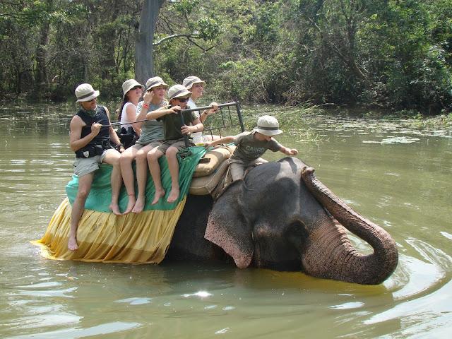 Familia Giusiano 6G, elefante