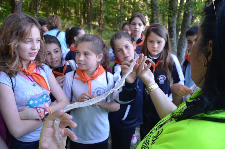 Una monitora , tecnico de MEdio Ambientemuestra a un grupo de alumnos la piel mudada de una serpiente