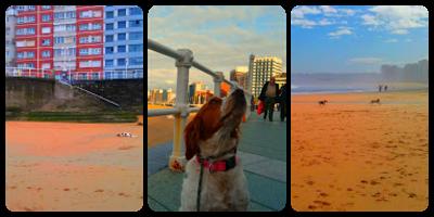 Tres imágenes mías en la playa de Gijón