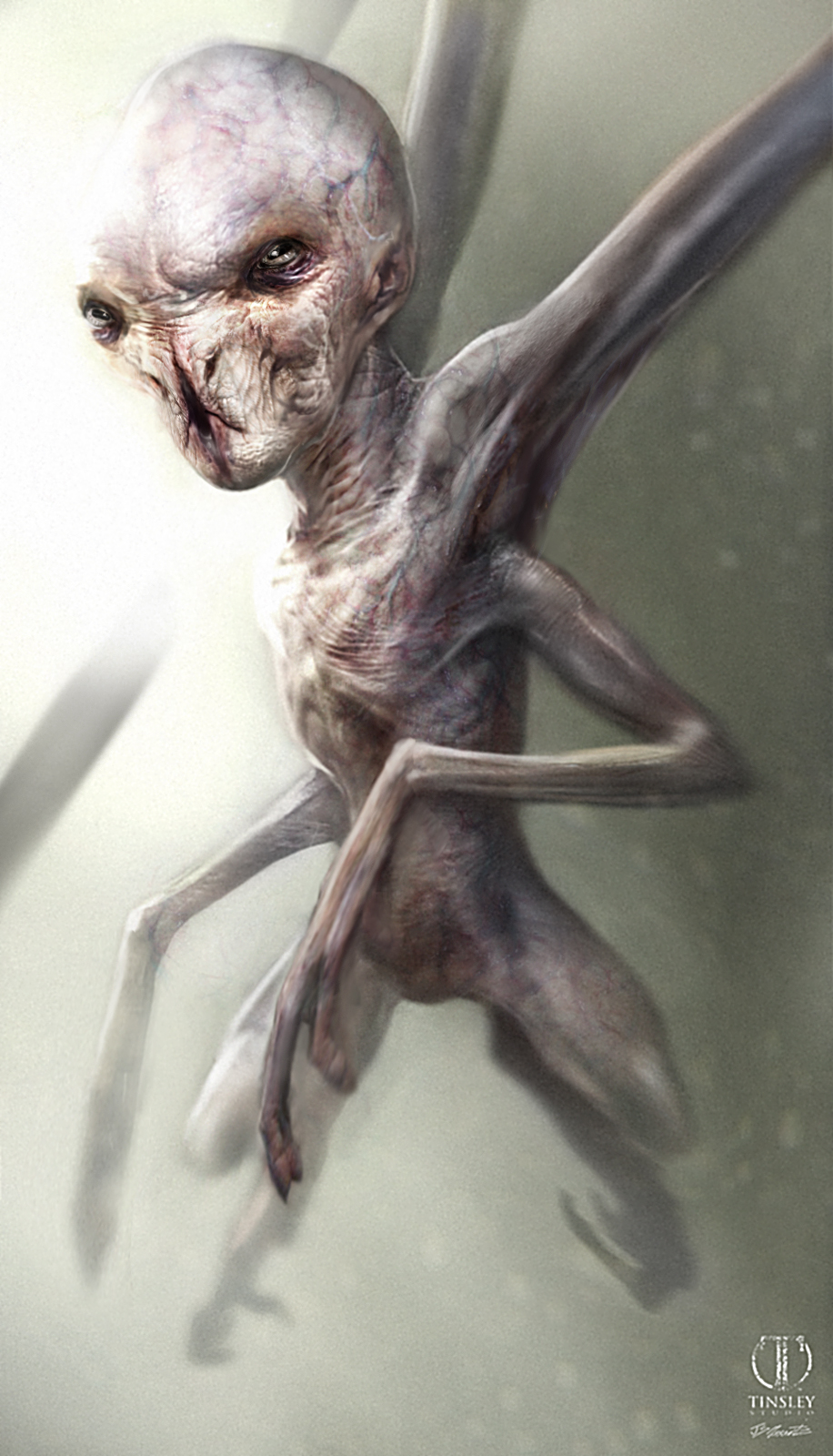 The Mist Creatures