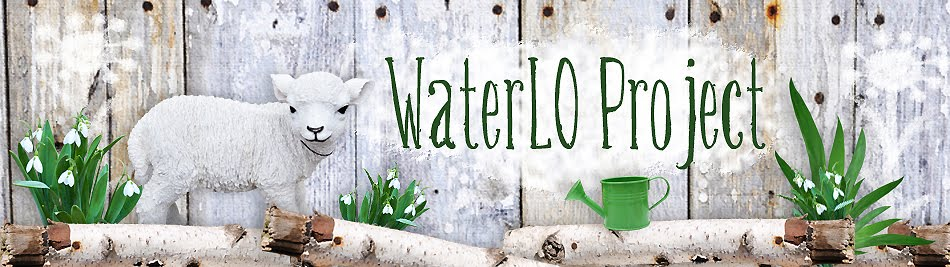 WaterLO Project