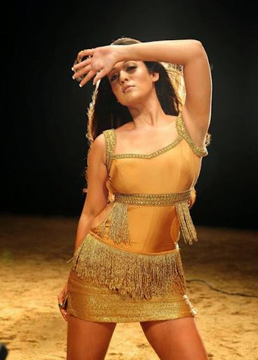 Nayanthara Spicy Hot Photos   nudesibhabhi.com