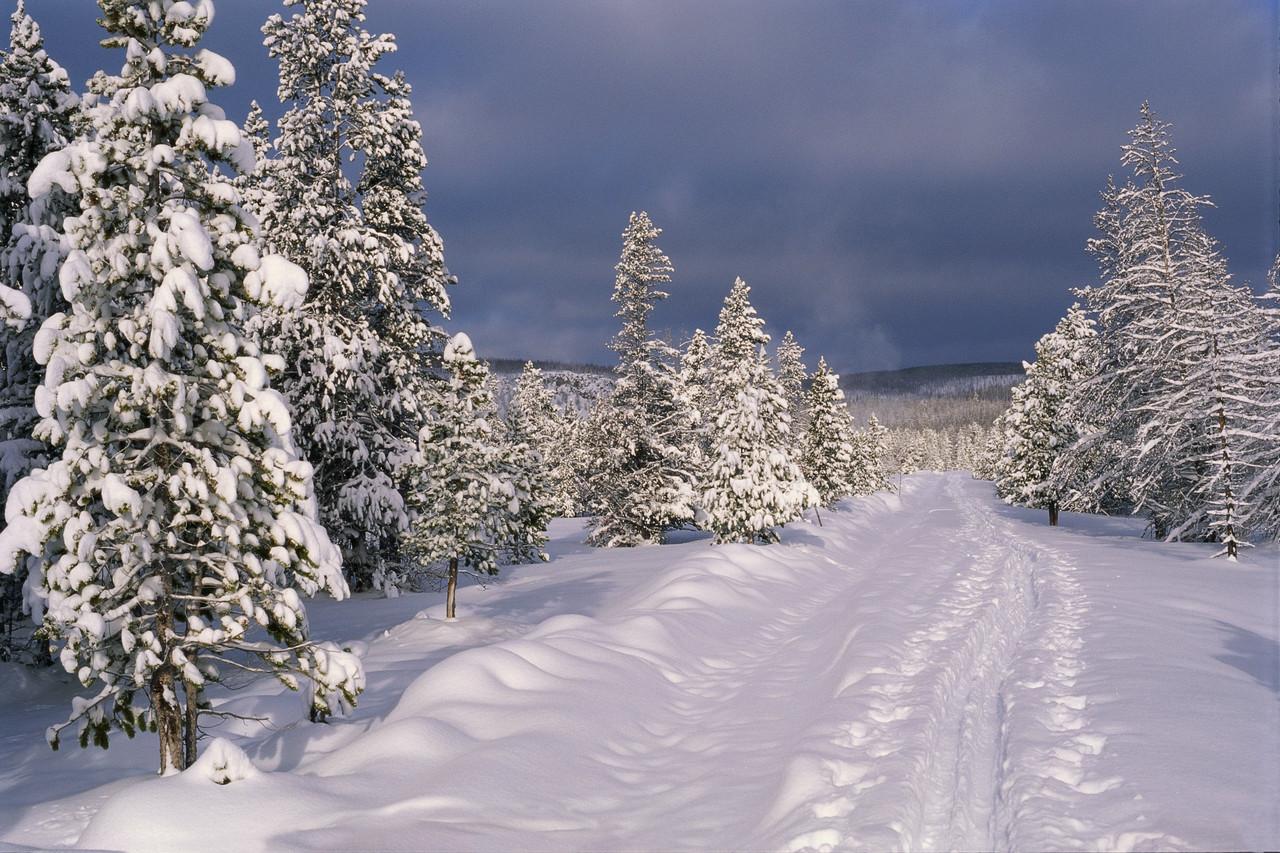 Postavi sliku Zima