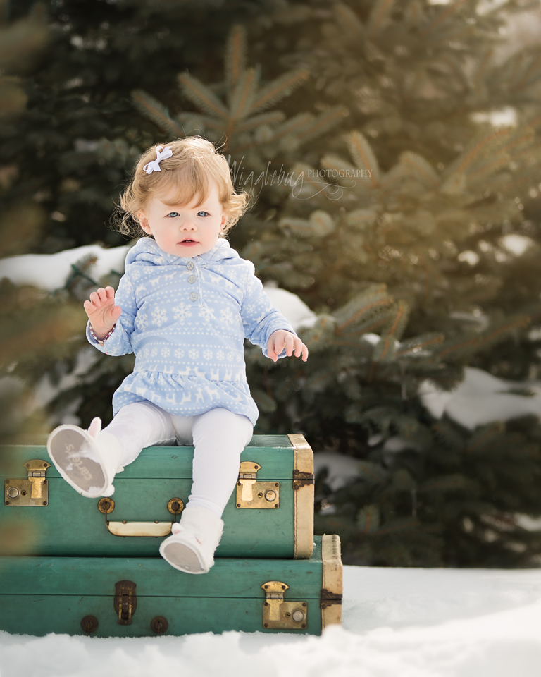 Geneva, IL Newborn and Child photographer: One year milestone session in the snow