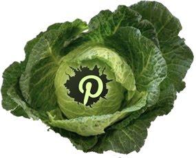 QSN en Pinterest