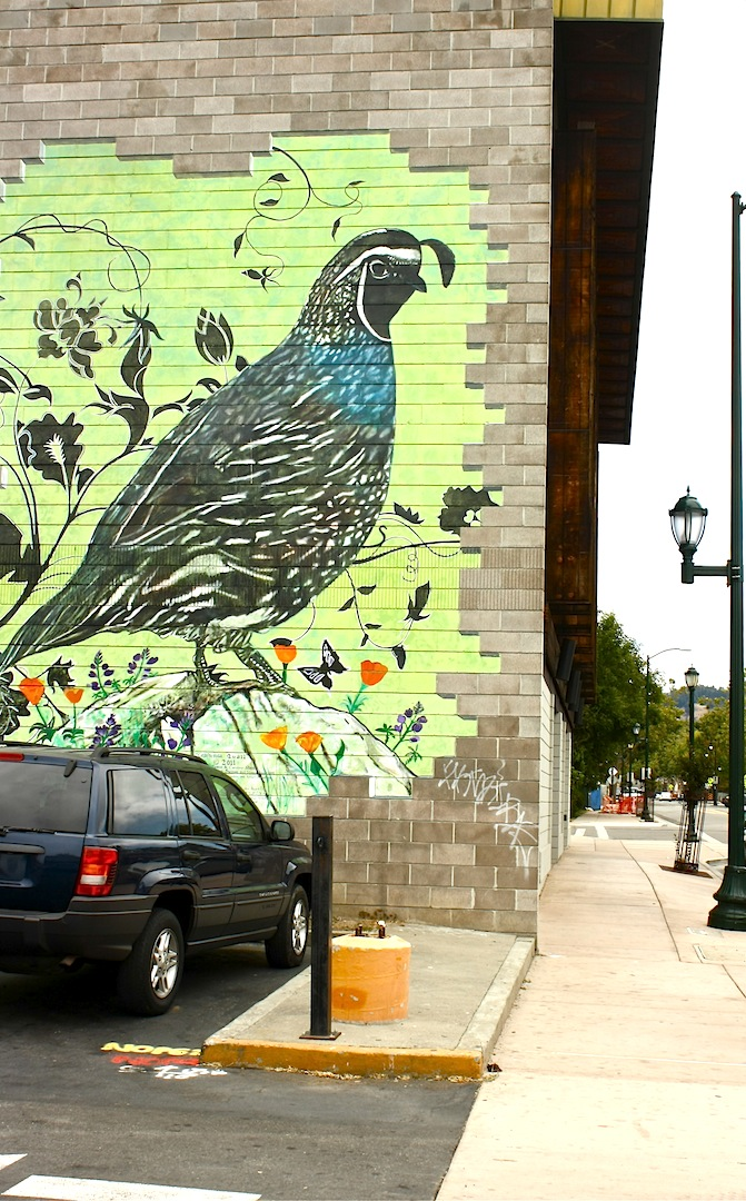 Oakland daily photo monday mural california quail for California mural