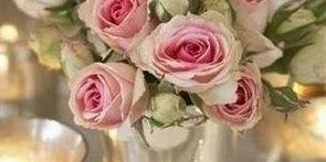 I miei fiori preferiti