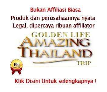 Peluang Bisnis 2013