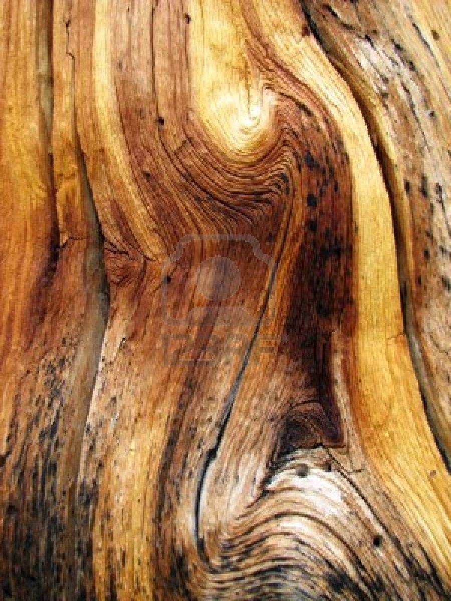 Wood From Trees ~ Skills workshop referral work years of gf more wavy