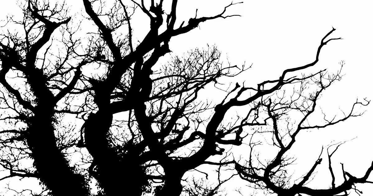 Charlton stitcher black and white trees