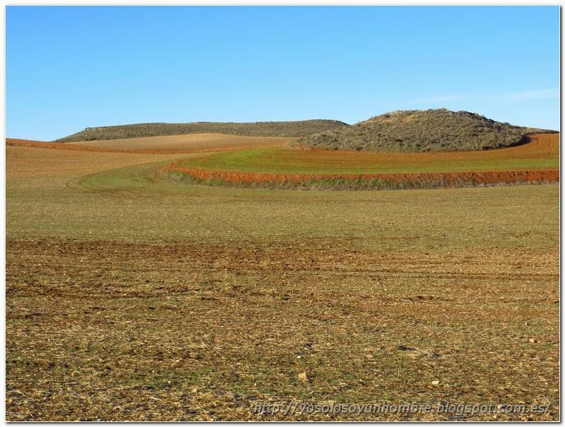 Campos de cultivo de la Mancha