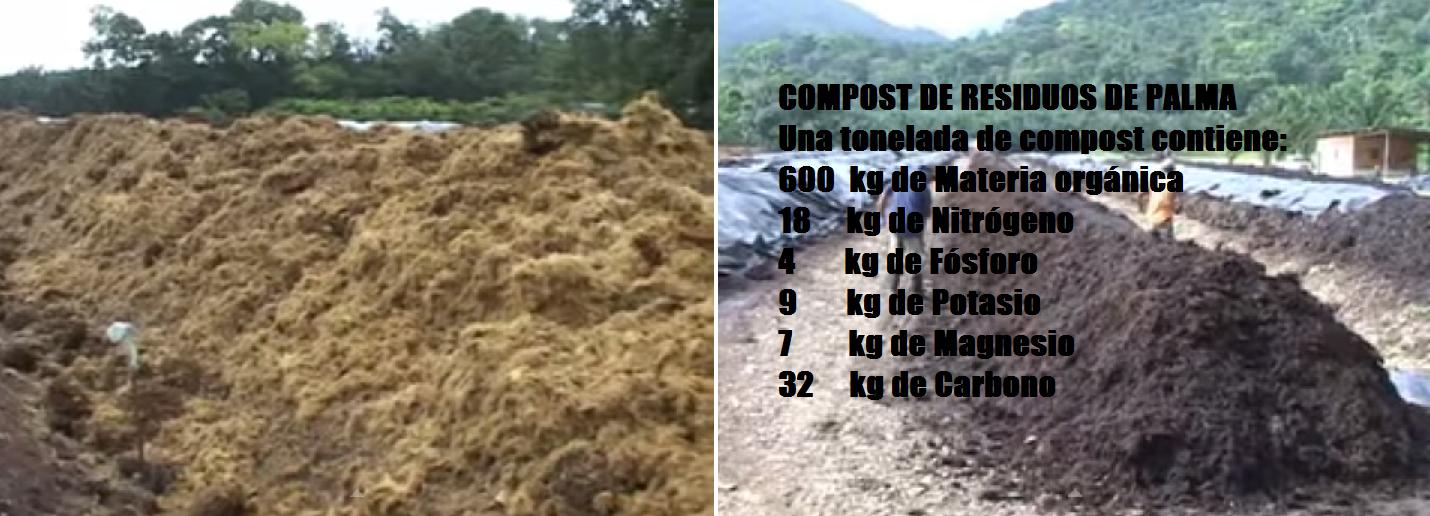 Compost de residuos de Palma de Aceite
