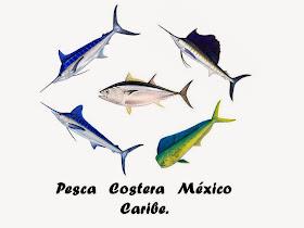 Pesca Costera México.
