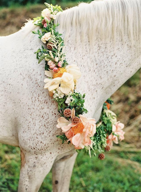 A Horse Is Quite a Beautiful Idea for Your Wedding Album