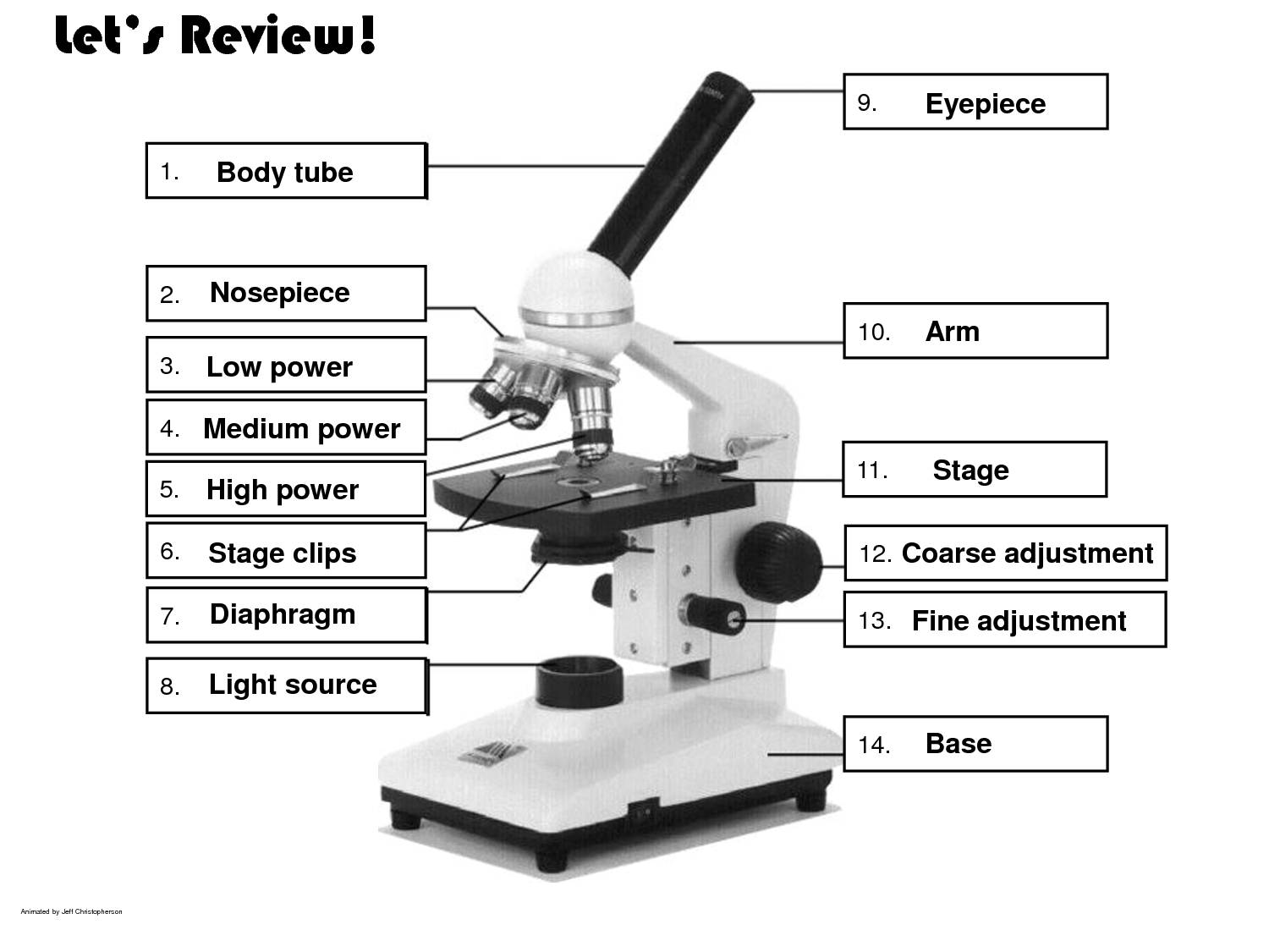worksheet. Microscope Parts Worksheet. joindesignseattle Worksheet  education, grade worksheets, learning, worksheets for teachers, and math worksheets Compound Microscope Parts And Functions Worksheet 1125 x 1500
