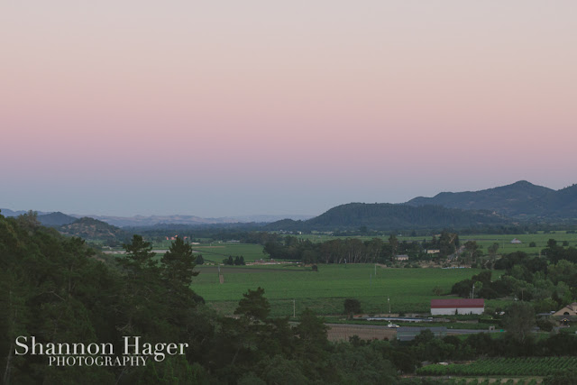 Shannon Hager Photography, Napa Valley, Sunset
