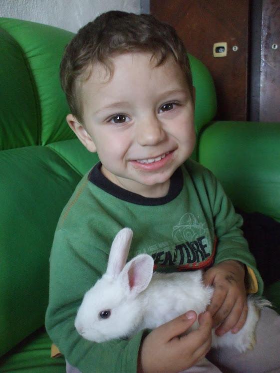 Davi Antonio e seu coelho Pimpom