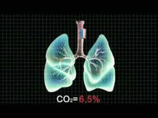 Факты о дыхании