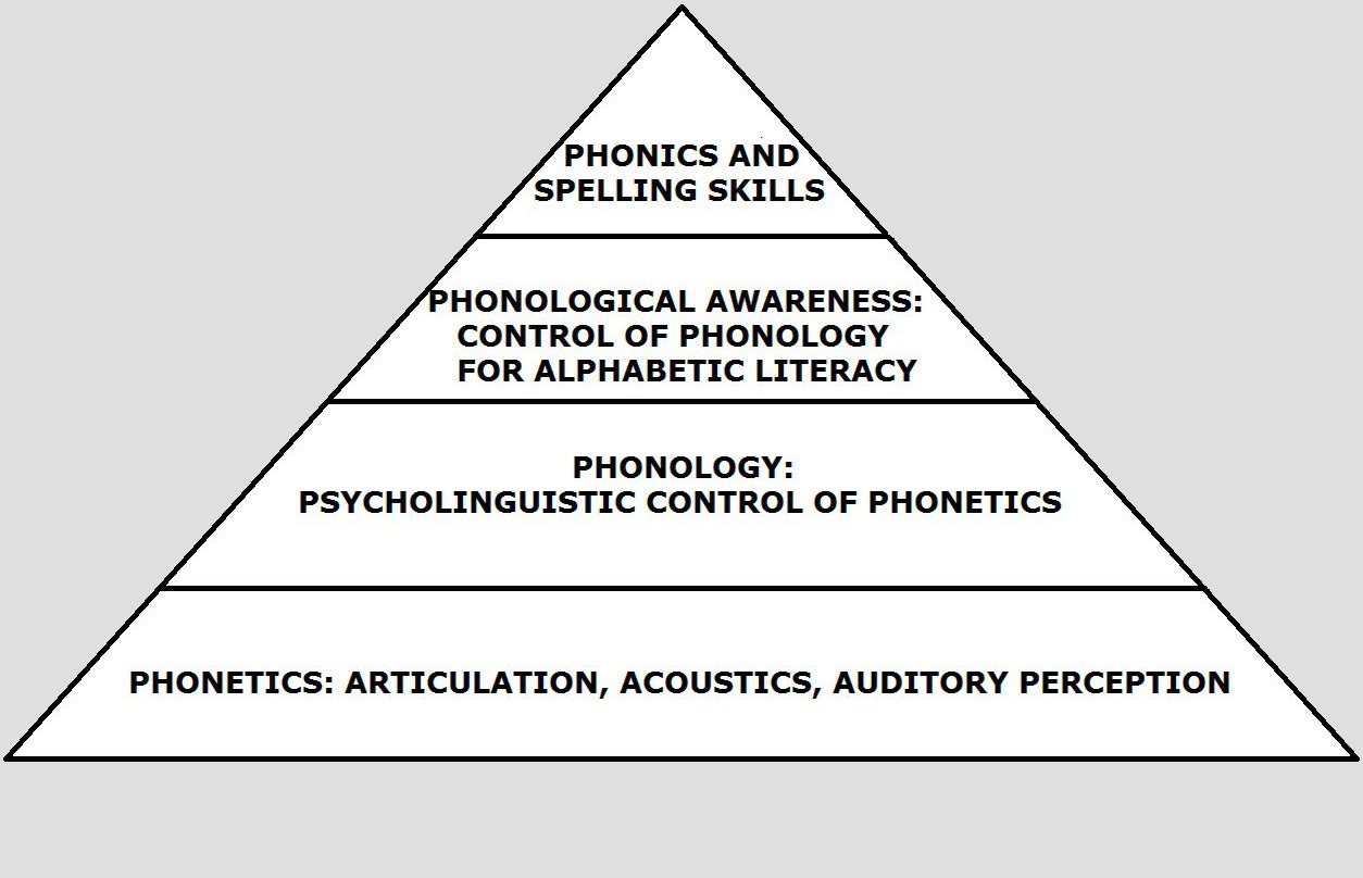 elt in elt j pyramid of phonetics and phonology 16 2013