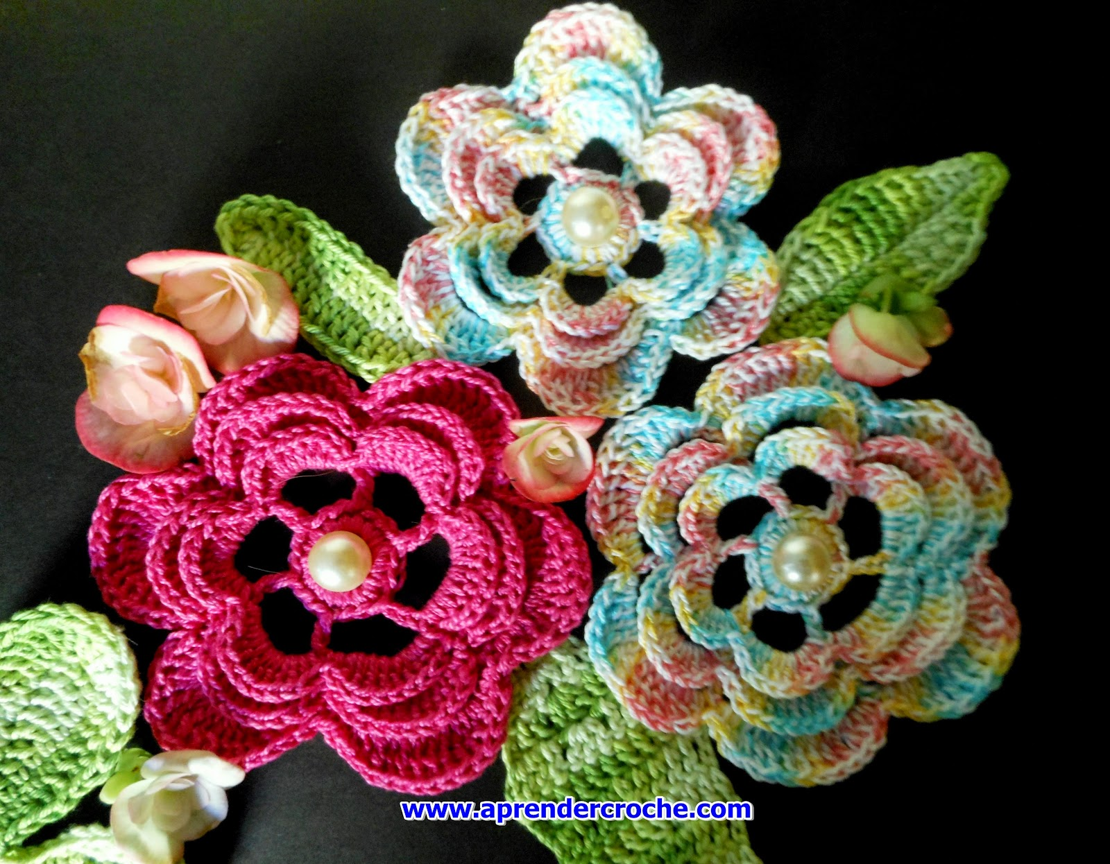 dvd 5 volumes flores aprender croche edinir-croche chan curso loja frete gratis