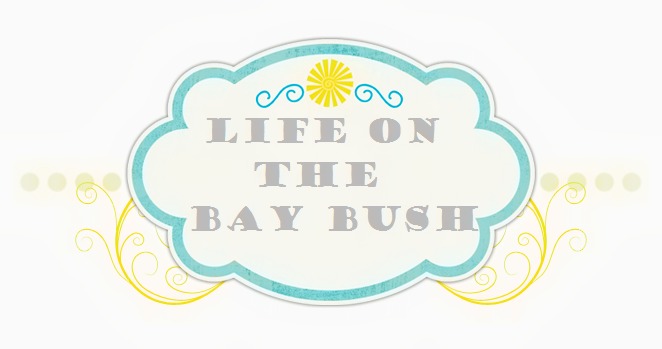 Life on the Bay Bush