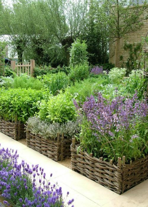 Tra orto e giardino i lavori nell 39 orto di gennaio - Lavori in giardino ...