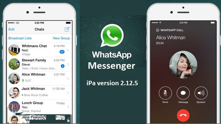Easy Steps on How to Download Whatsapp for iphone