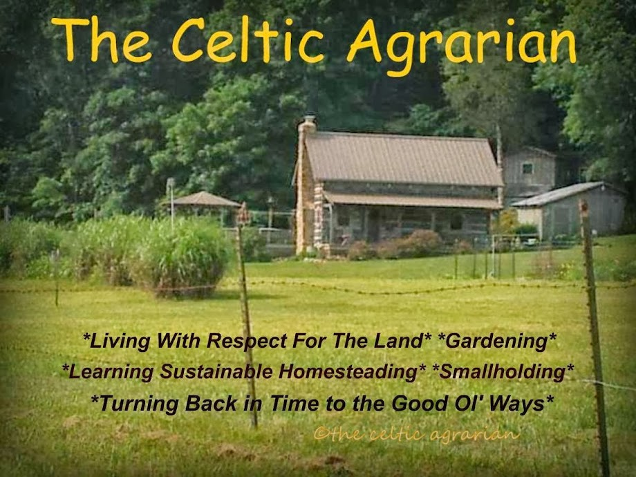 The Celtic Agrarian