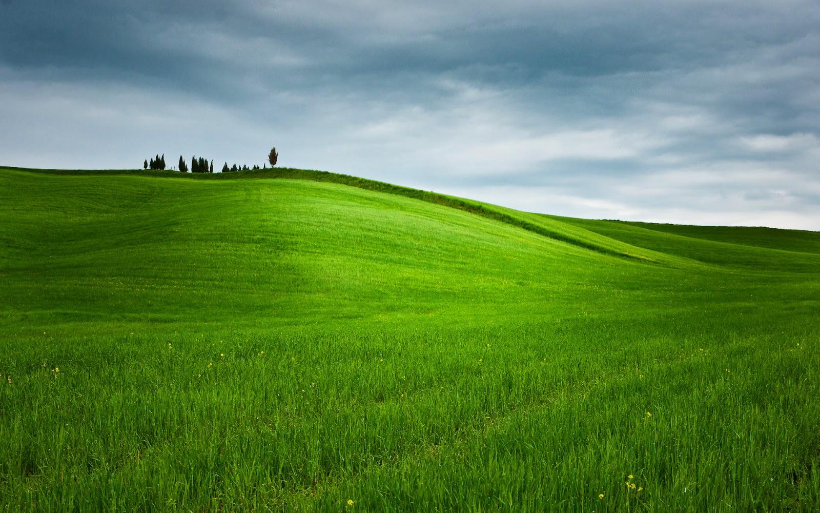 landscape nature hd desktop wallpapers 19202151080 for