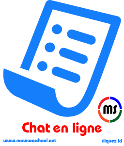 Chat en ligne (New)