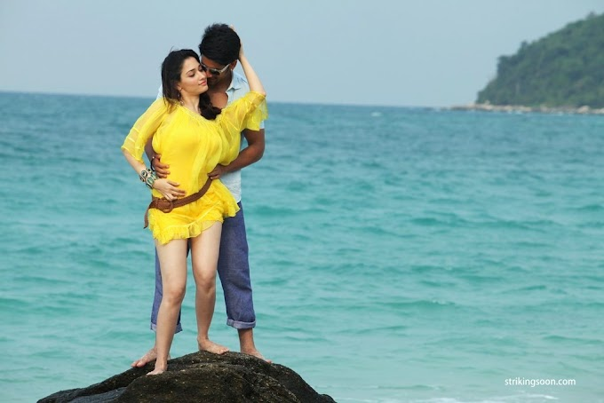Tamanna's shocking remuneration for Tadaakha!