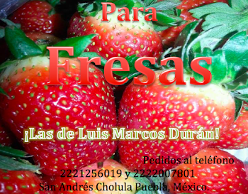 Ricas Fresas