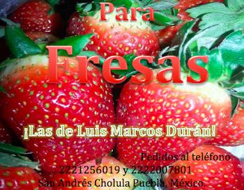 Ricas Fresas