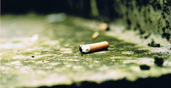 http://1.bp.blogspot.com/-gx5Y7NdBvBM/T2rfMNIU1CI/AAAAAAAAAB8/PTNVRcbeX6c/s1600/cigarette-butt-kills-fish1.jpg