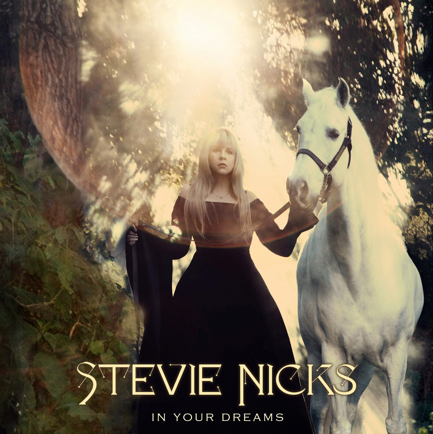 HQ+In+Your+Dreams+Album+Cover+Stevie+Nic