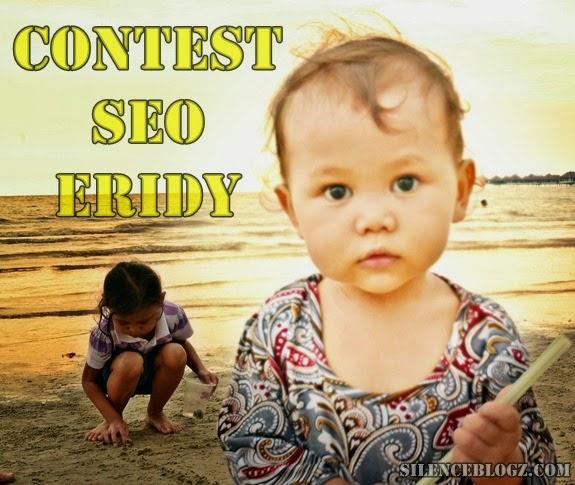 Contest SEO Eridy, Contest SEO Eridy 2013
